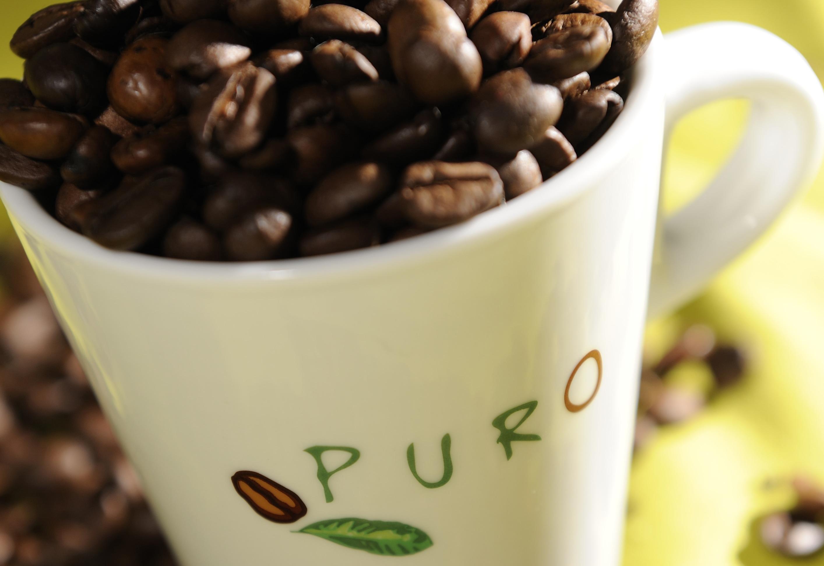 puro-beans-cup